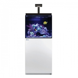 Aquarium RED SEA Max E 170 LED + Meuble blanc + Eclairage ReefLED. Sac de sel RED SEA Salt 7 kg OFFERT.