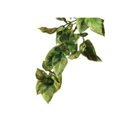 Plante Artificielle Terrarium Tortue