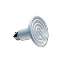 Lampe Chauffante Terrarium