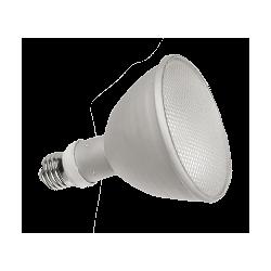 Lampe Tout en 1 Terrarium
