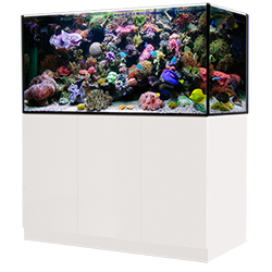 Aquarium AQUA MEDIC
