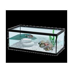 Terrarium et Aqua Terrarium
