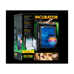 Incubation Reproduction